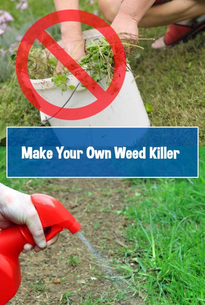 diy greden weed killer