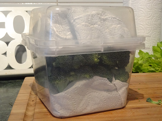 How to store broccoli so it stays crisp and fresh